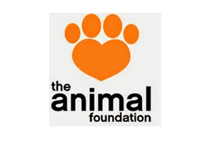 animalFoundation2